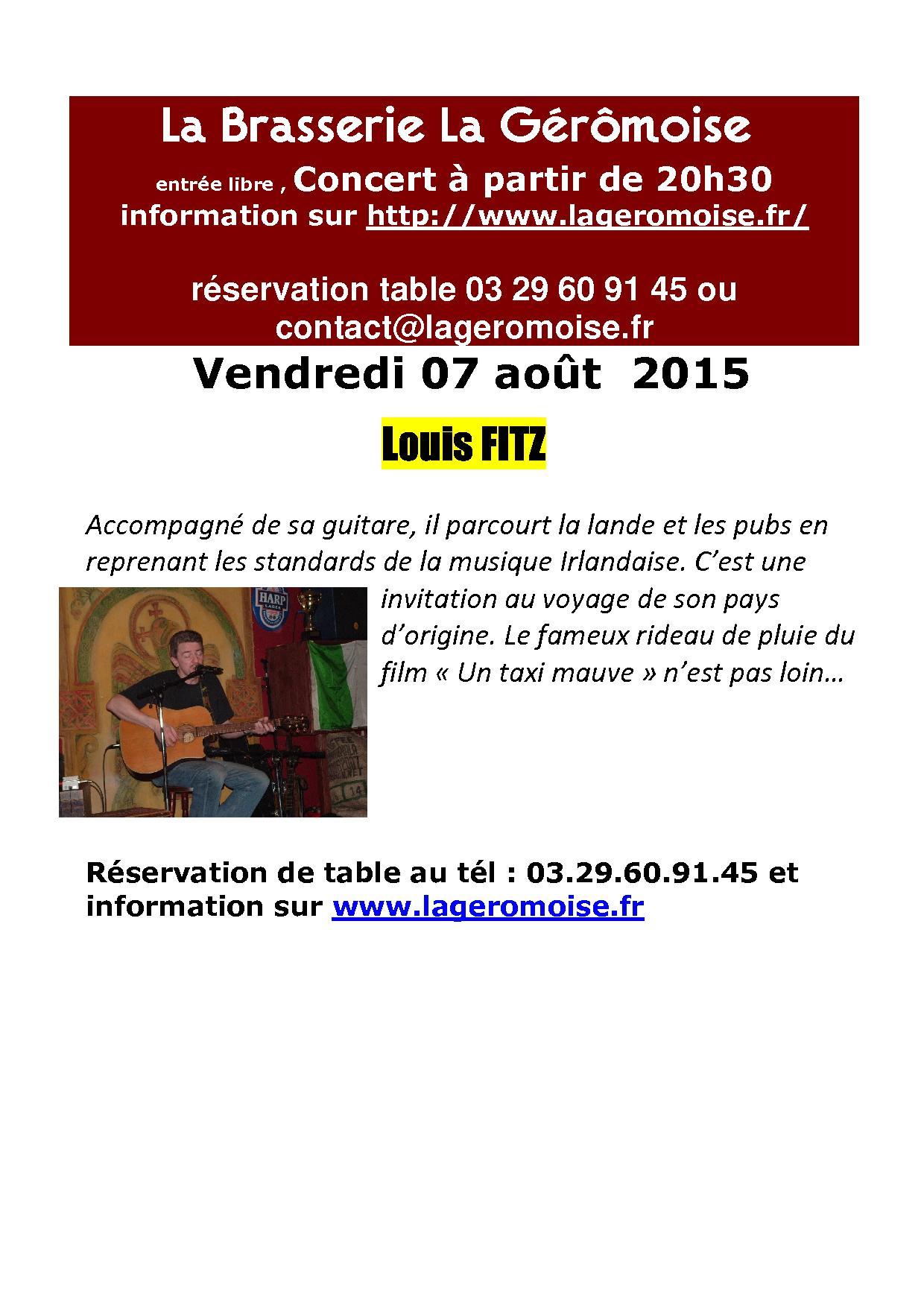 concert-7-aout-2015-folk-louis-fitz.jpg